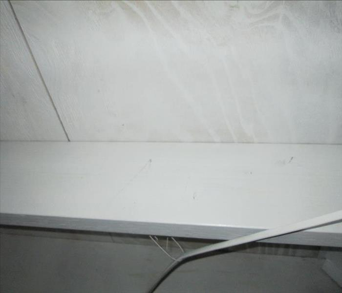 Mold Remediation in Crawlspace