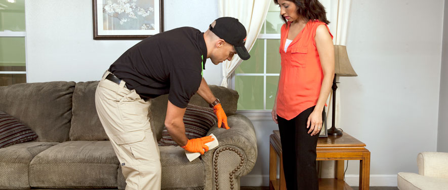 Greenville, SC carpet upholstery cleaning